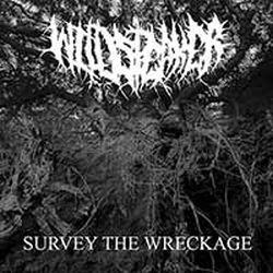 Wildspeaker - Survey the Wreckage