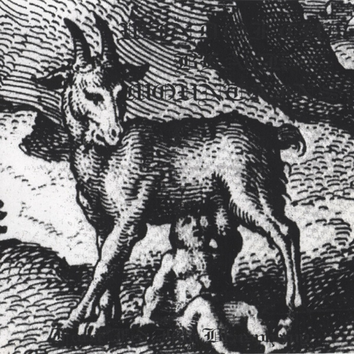 Reviews for Wind of the Black Mountains - Force Fed into Blasphemy