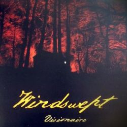 Reviews for Windswept - Visionaire