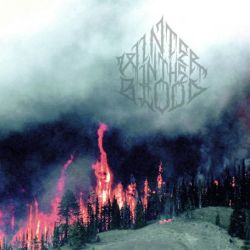 Reviews for Winter in the Blood - Forest Fires