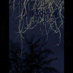 Winterkind - Das Leiden eines verstorbenen Leibs
