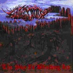 Wintermoon (EST) - The Sky Is Bleeding Ice