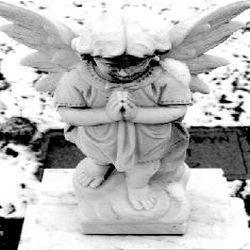 Winter's Mourn - Begotten by Darkness