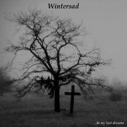 Reviews for Wintersad - ...in My Last Dreams