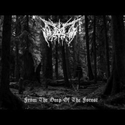 Winterstorm (ESP) - From the Deep of the Forest