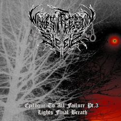 Wishes of Eternal Sleep - Epilogue To All Failure - Part III: Light's Final Breath