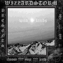 Review for Wizzardstorm - Wild Lands