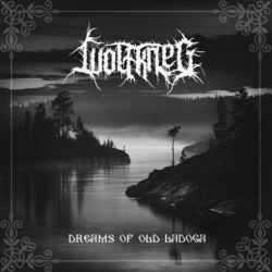 Reviews for Wolfkrieg - Dreams of Old Ladoga