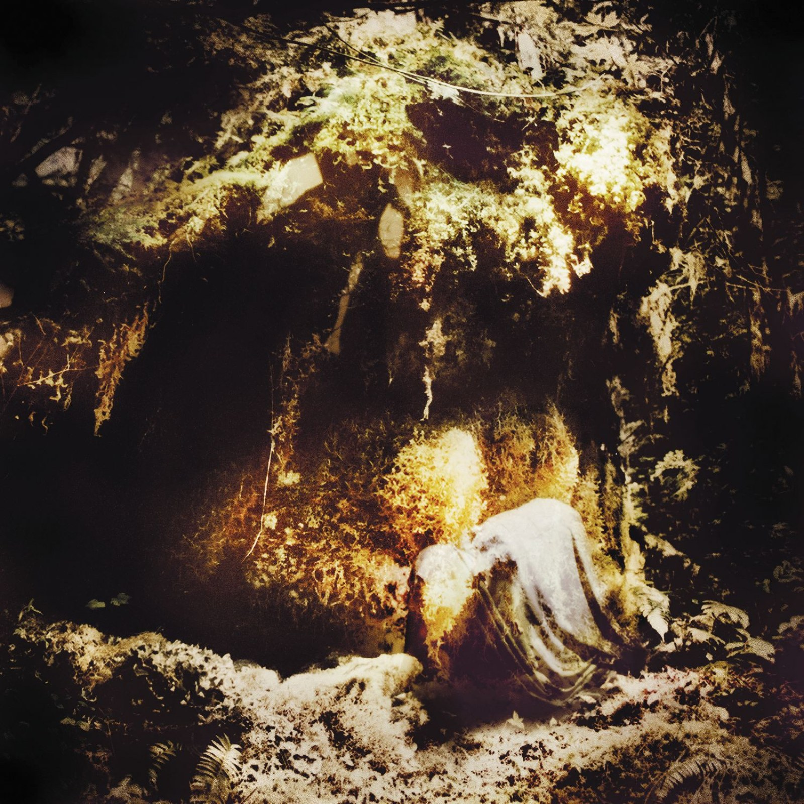 Review for Wolves in the Throne Room - Celestial Lineage