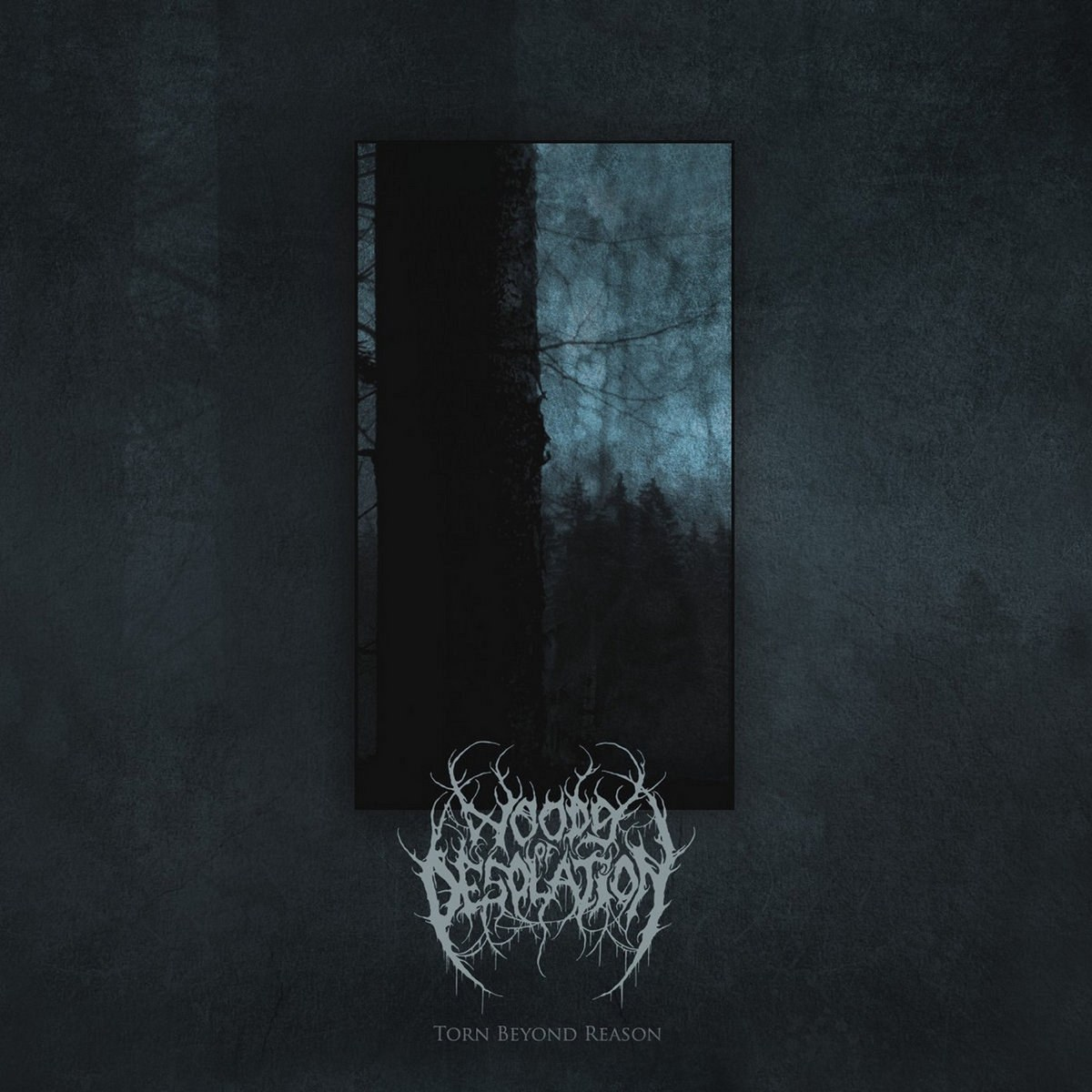 Review for Woods of Desolation - Torn Beyond Reason