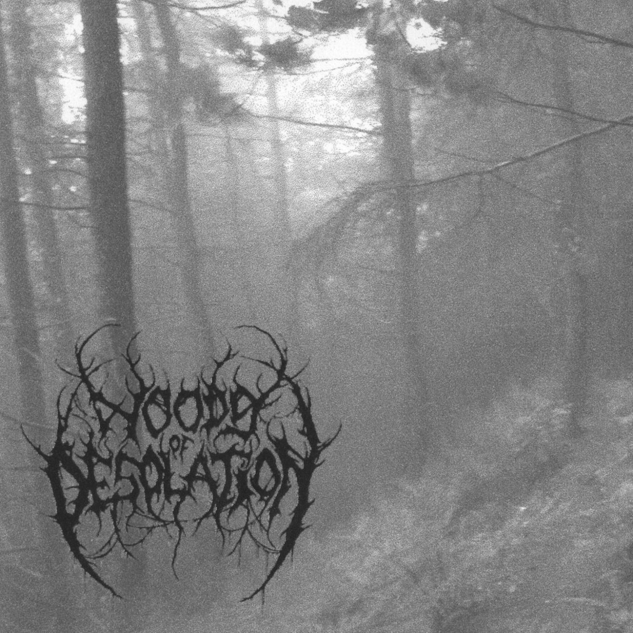 Review for Woods of Desolation - Woods of Desolation