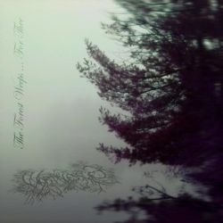 Worthless Life - The Forest Weeps for Thee