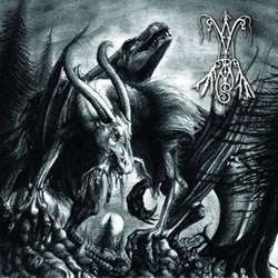 Reviews for Wyrms - Aashanstys