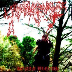 Reviews for Ynkleudherhenavogyon - Honan Bleydh