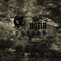 Reviews for Ysengrin - T.R.I.A.D.E
