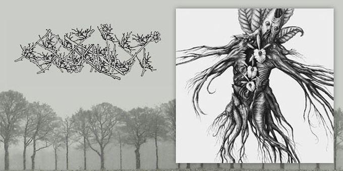 New Botanist album streaming online